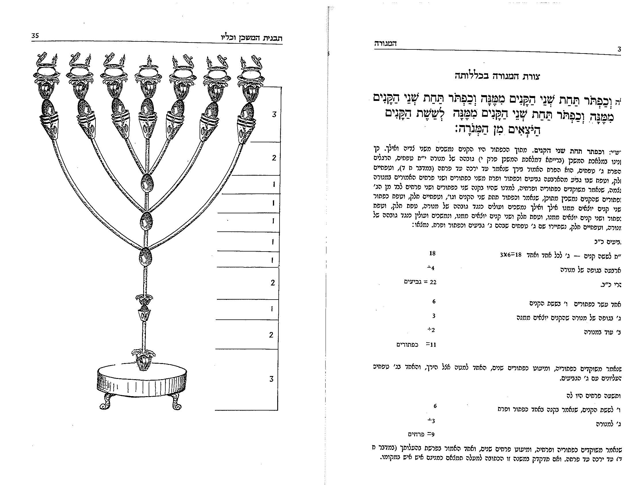 Diagram Of Menorah Trusted Wiring Lighting The Daily Daf Solomons Menorahs